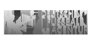 deutsche-fussball-agentur-logo